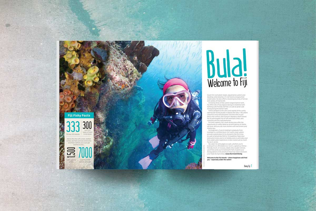 Fiji Diving bula fish