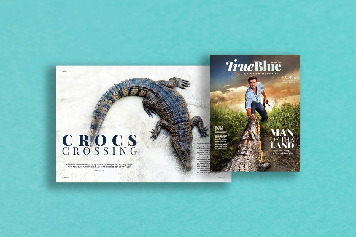Rex magazine matt wright crocodiles story